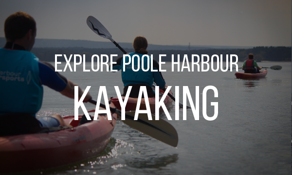 kayak tours poole harbour